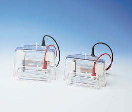 C.B.S. Scientific Vertical Mini-Gel Kits - Dual Unit Kit, Model MGV-402, Each