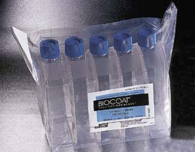 Multiwell Plates, 96-Well, Black/Clear - BD BD BioCoat Cellware, Collagen Type I, Model 356649