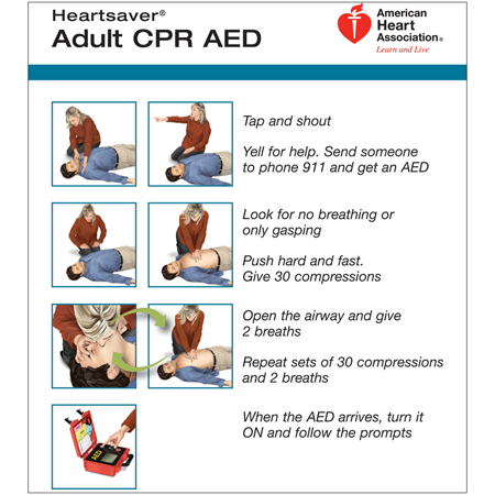 Worldpoint Ecc CPR AED Wallet Card Adult Model 90 1051 Pkg Of 100