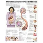 Understanding Type II Diabetes Chart, Each