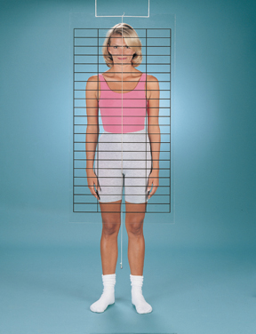 Baseline Posture Evaluation Set (Grid And Evaluator)